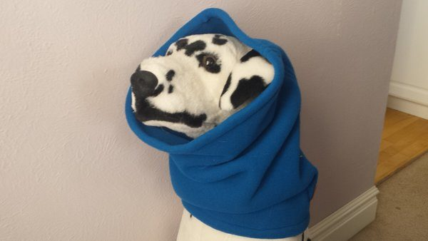 Designer Dog Accessories for cold weather