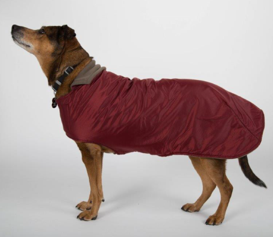 Boulder winter coat for dogs