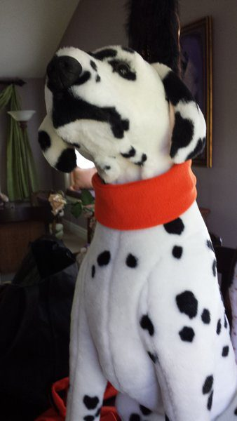Hunting Gear Designer Dog Accessories