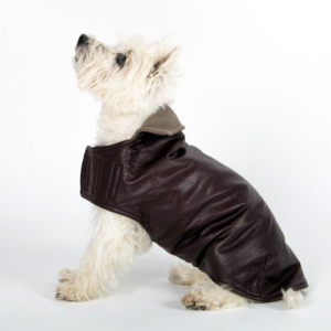 Winter Leather Coat for Dogs