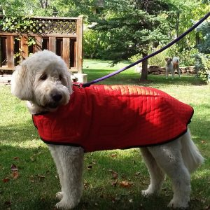 powershield dog winter coat